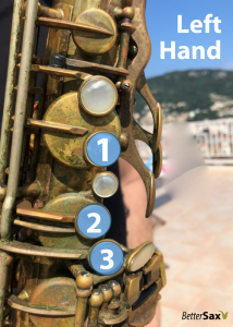 Left hand fingers 1, 2 and 3