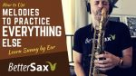 Learn Sunny by ear saxophone lesson better sax